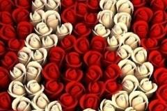 8_martie_bistritanews_ro_07615000